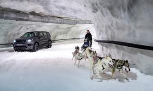 ¿Un SUV contra un trineo con perros? Esta singular competición se ha disputado en Finlandia