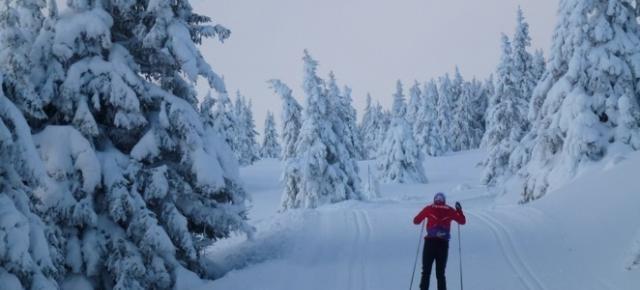 Laponia Finlandesa. Esquí de fondo y auroras boreales. Akaslompolo-Ylläs