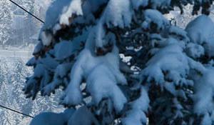 Gran esquí en Aspen Mountain a precio imbatible
