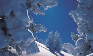 Austria, un magnífico destino de nieve que desearás no haber conocido