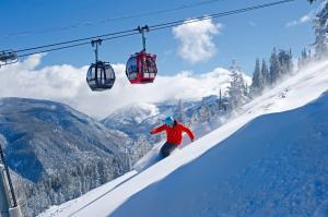 14 curiosidades y diferencias del esquí en Norteamérica