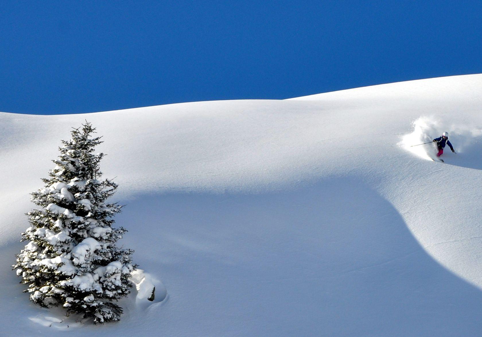 Ski Freeride Saalbach