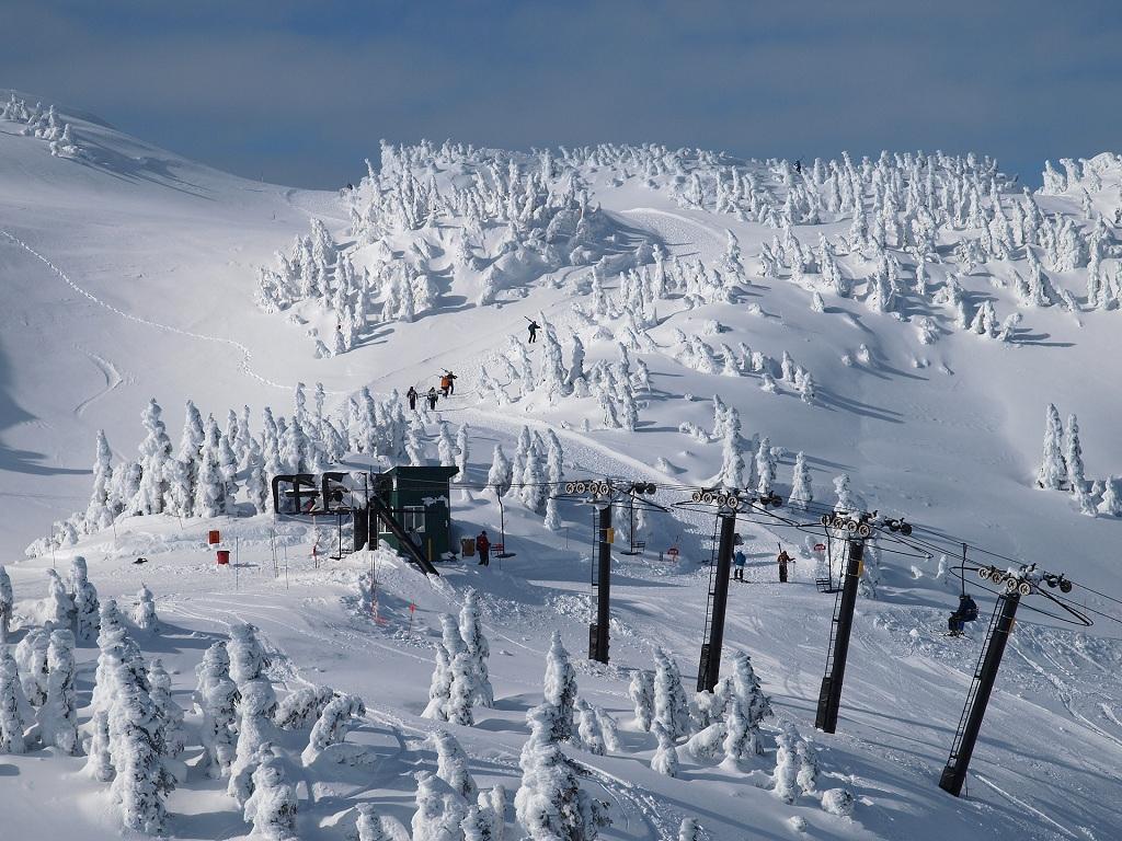 Paisaje nevado en Eaglecrest