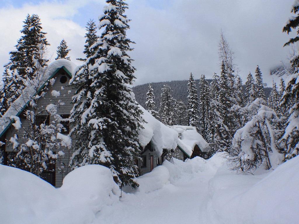 Foto de Emerald Lake, BC, Canada