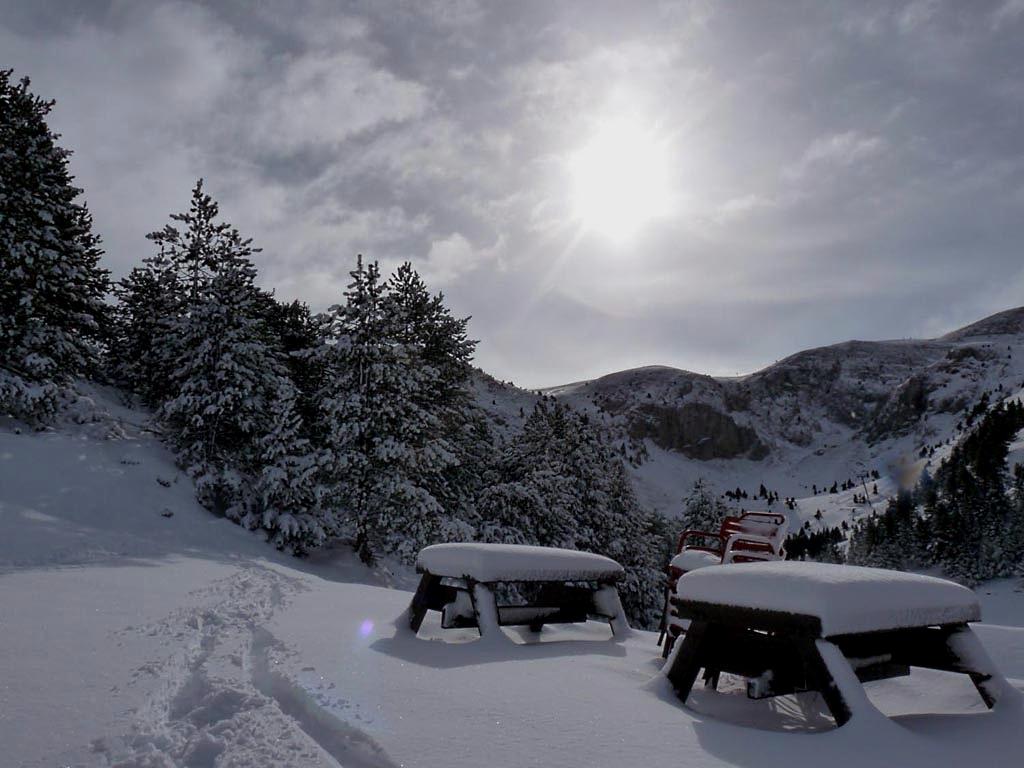 Paisaje invernal en Masella