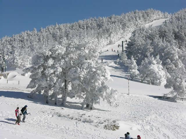 Imagen de la pista principal de Punto de Nieve Santa Inés