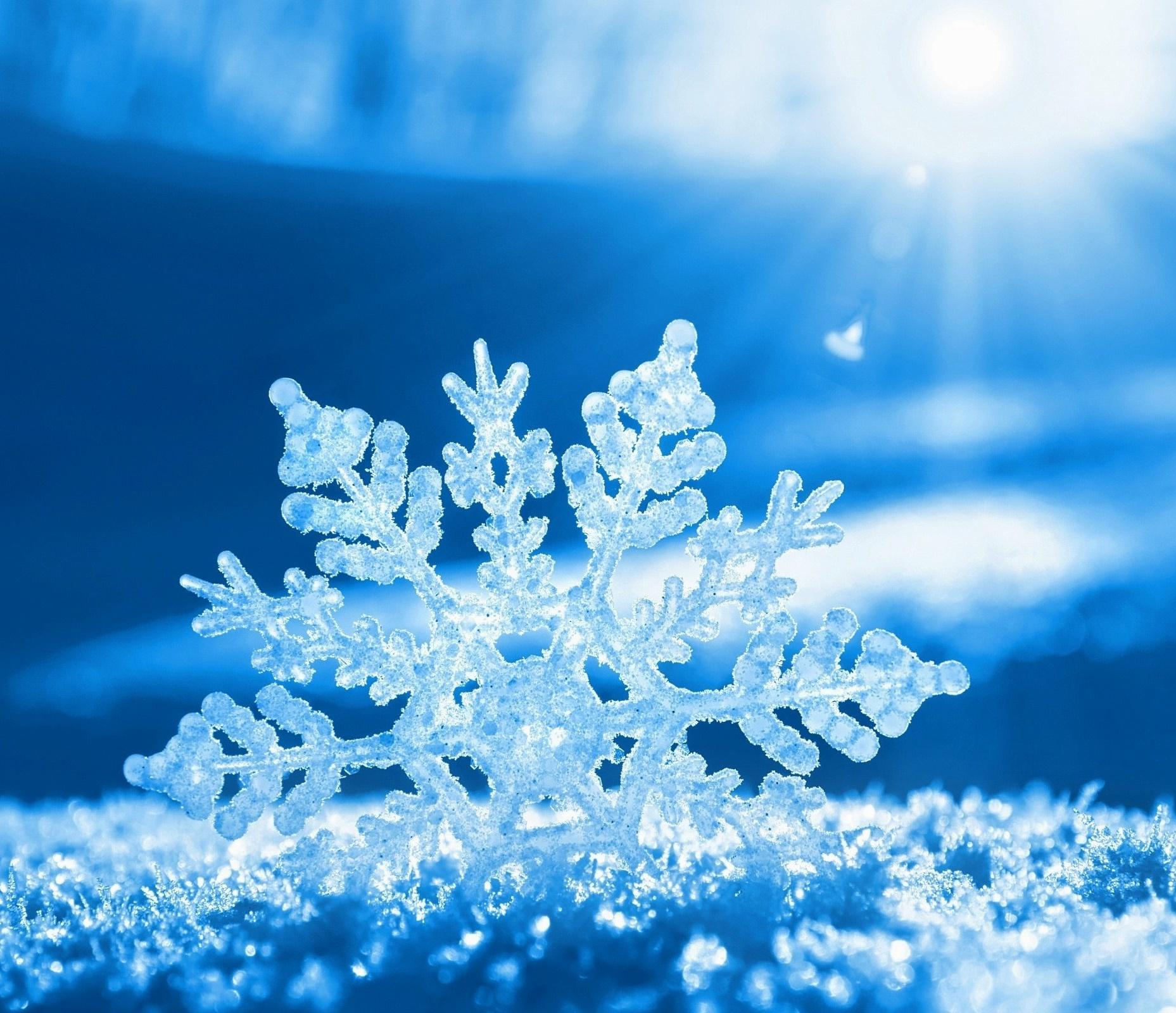 La Nieve Ese Mágico Elemento Lugares De Nieve