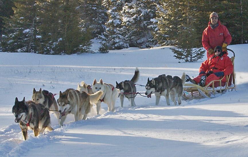 eedec7861e Top 10 actividades de invierno para disfrutar de la nieve sin esquiar