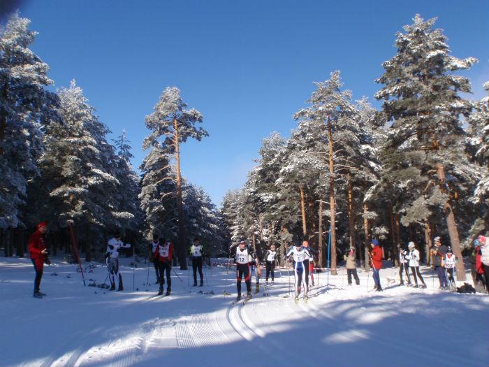 Pistas de esquí de fondo de Navafría (Segovia)