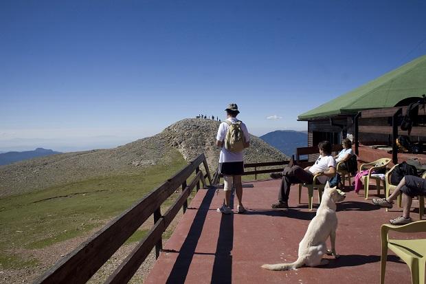 Refugio Niu de l'Àliga de La Molina