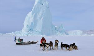 """""""Desafío Ártico"""" bate su récord recorriendo 450 kilómetros con perros de trineo por tierras heladas"""