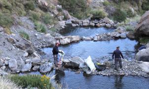 Sierra Nevada realiza una campaña de limpieza en el entorno del área esquiable