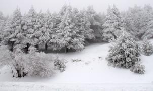 Las fotos y el vídeo de la gran nevada de abril en Sierra Nevada