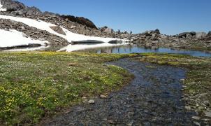 Sierra Nevada se será un referente mundial contra el cambio climático