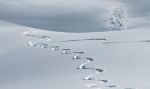 ¿Sabes por qué el esquí se llama esquí?