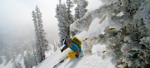 Ski Utah: Alta, Brigthon, Snowbird y Solitude