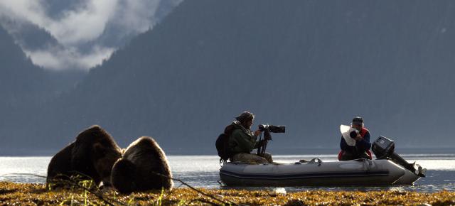 Avistamiento de osos Spirit y Grizzlies en Spirit Bear Lodge
