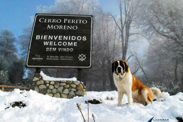 Argentina Rio negro Cerro Perito Moreno
