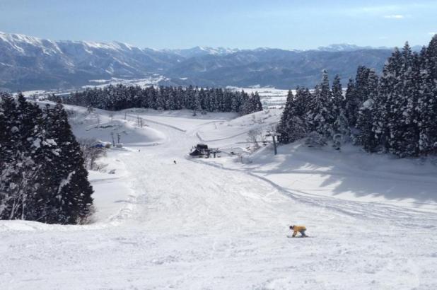 Foto de SnowJapan esquiando en Chateau Shiozawa