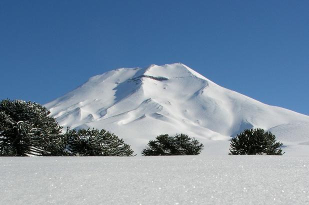 Imagen de Corralco, vista del volcán Lonquimay