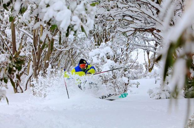 Fabulosa imagen de Falls Creek, año 2013 esquí Völkl Gotama