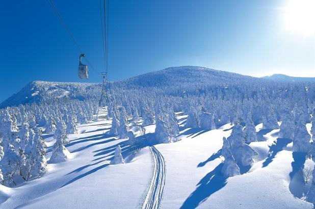 Paisaje nevado en Furano