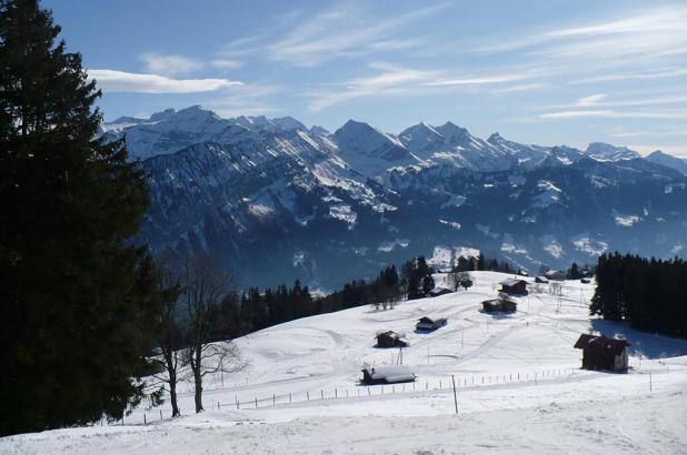 Paisaje nevado en Hohwald