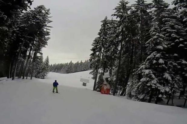 Esquiando entre los bosques de La Berra