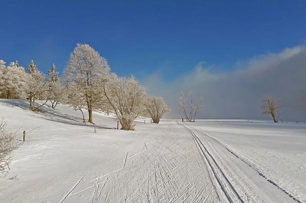 Esquí de fondo en La Vue des Alpes