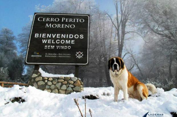 Cerro Perito Moreno despide la temporada