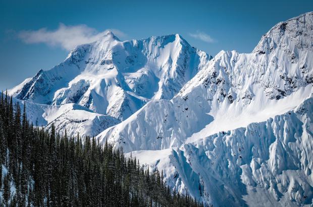 Los osos y los indígenas le ganan la partida a la estación de esquí de Jumbo Glacier (Canadá)