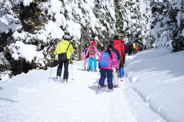 Calendario europeo para programar tus esquiadas y no hallar aglomeraciones en las pistas