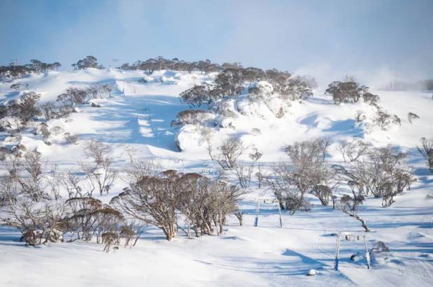 Las estaciones de esquí de Australia esperaban un gran alijo de drogas. ¡No va a llegar!
