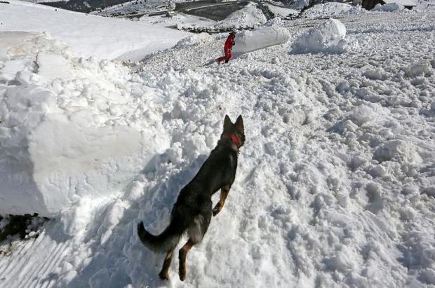 Milagro en La Plagne. Rescatan a un niño que se pasó 40 minutos sepultado por una avalancha
