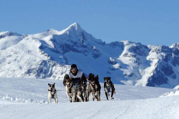 Resurge el espíritu de Pirena con la Snow Race by Gos Àrtic