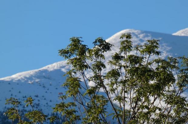 Los Pirineos y los Alpes amanecen blancos, con nevadas en muchas zonas de hasta 10 centímetros