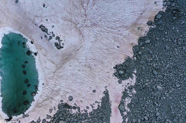 """La """"nieve rosa"""" llega a los Alpes italianos y acelera su derretimiento"""