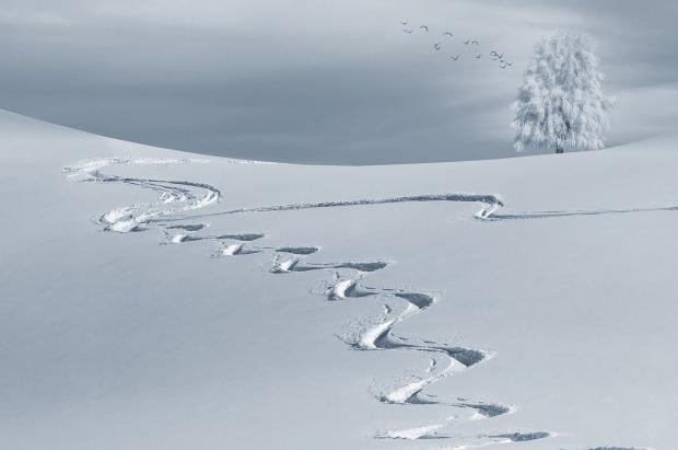 El ICTE elaborará los protocolos sanitarios para las estaciones de esquí españolas