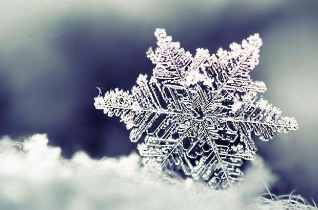 La nieve: del copo al manto