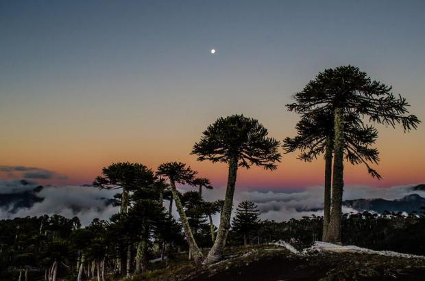 Araucanias al atardecer. Las 8 cumbres mas importantes de la Araucania, Chile, en 8 días.