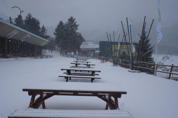 La nevadas mejoran las condiciones de La Molina, Vall de Núria, Vallter 2000, Espot y Port Ainé