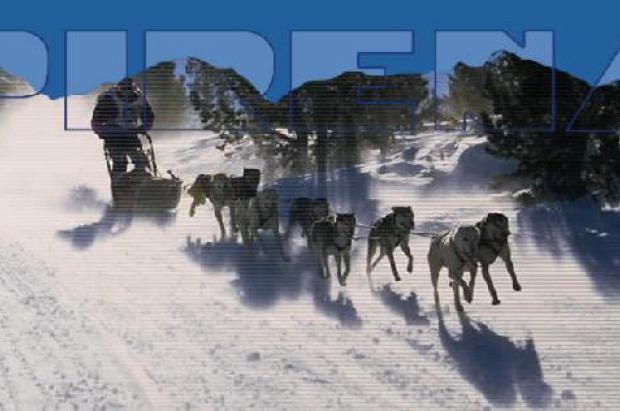 Desaparece Pirena, la prueba más importante en Europa de trineos con perros