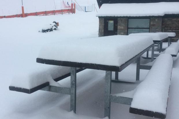Fotos y vídeo de la nevada en los Pirineos catalanes (25 de marzo de 2020)