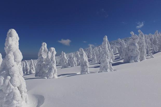 Japón, el país donde nieva más del mundo. ¿Por qué?