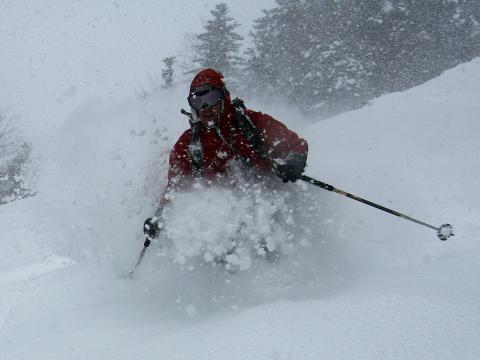 Incluso en dias de fuertes nevadas, podemos encontrar el paraíso si buscamos terreno arbolado