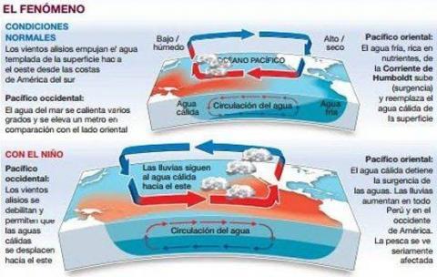 Infografía de circulación del agua y las lluvias bajo el fenómeno del 'Niño'