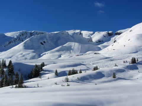 grindelwald-first visto desde el descenso al valle