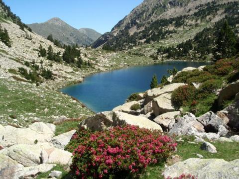 Estany Gran o de les Truites (Vall de Carança)