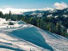 Paisaje nevado en Bear Valley