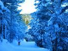 Sant Joan de L'Erm pista de esquí nórdico
